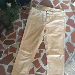 London Jean/VS Catalog Twill Lace Up Leg Pant